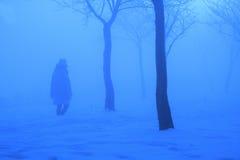 Błękitna zima Fotografia Royalty Free