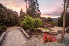 Błękitne góry NSW Australia Obraz Stock