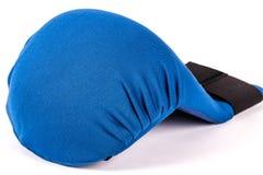 Błękitne karate rękawiczki Obrazy Royalty Free