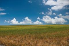 błękitne niebo białe pola chmur Obrazy Royalty Free
