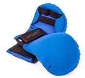 Błękitne sport rękawiczki Zdjęcia Royalty Free