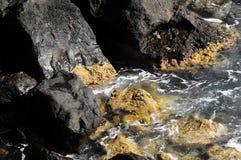 Błękitne Wody Macha teksturę Obraz Stock