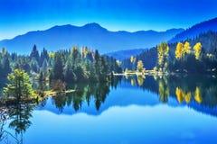 Błękitne Wody Yewllow drzew jesieni Snoqualme przepustki Złocisty Jeziorny domycie Obrazy Stock