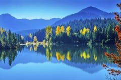 Błękitne Wody Yewllow drzew jesieni Snoqualme przepustki Złocisty Jeziorny domycie Fotografia Stock