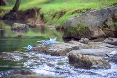 Błękitnego papieru łódkowata sterta na skale w strumieniu z zieloną trawą deponuje pieniądze zdjęcia stock