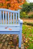 Błękitnej ławki jesieni Pomarańczowy drzewo Obraz Stock