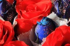błękitnej czerwieni róża Zdjęcie Royalty Free