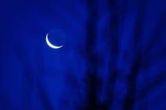 Błękitnej księżyc sceneria Obrazy Royalty Free