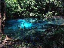 Błękitnej zieleni basenu piękna natura Obrazy Stock