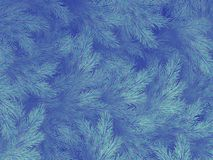 Błękitnej zieleni gałąź drzewo, świerczyna lub sosna z copyspace, 10 eps royalty ilustracja