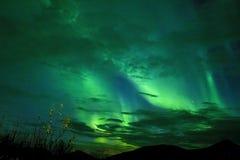 BŁĘKITNEJ zieleni zorza W ARKTYCZNYM niebie obrazy stock