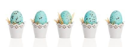 Błękitni Cętkowani jajka Zdjęcia Stock