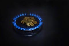 Błękitni płomienie gazu naturalnego palenie od gazu Zdjęcia Royalty Free