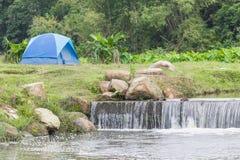 Błękitni turystyczni namioty w lesie Zdjęcia Stock