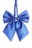 błękitny łęku krawata kobiety Zdjęcie Stock