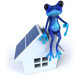 błękitny żaba royalty ilustracja