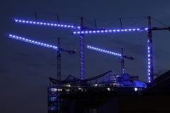 błękitny żurawie Zdjęcia Royalty Free