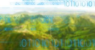 Błękitny binarny kod przeciw zielonym rozmytym górom Fotografia Royalty Free