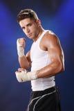 błękitny bokser Fotografia Stock