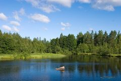 błękitny chmur lasu jezioro Obrazy Stock