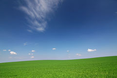 błękitny chmur pola zieleni nieba biel fotografia royalty free