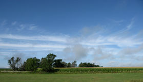 błękitny chmur rolni nieba drzewa Obrazy Royalty Free