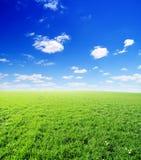 błękitny chmurny śródpolny trawy zieleni niebo obrazy royalty free
