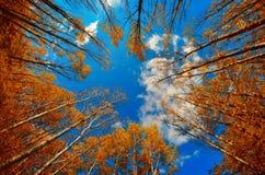 Błękitny chmurny oko Zdjęcie Royalty Free