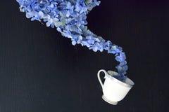 Błękitny coffe fotografia stock
