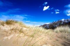 błękitny diun piaskowaty niebo Obraz Royalty Free