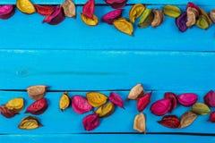 Błękitny drewno z wysuszonym kwiatu tłem zdjęcia stock