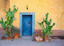 Błękitny drzwi wietrzeć stiuk puszkować kaktus rośliny zdjęcie royalty free