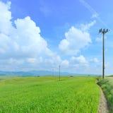 błękitny elektrycznego pola zielona lina władzy niebo Obrazy Stock
