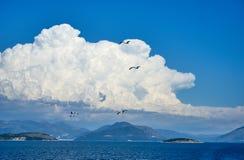 błękitny frajerów morza niebo Zdjęcia Royalty Free