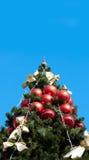błękitny futerka zieleni nieba drzewo Obraz Royalty Free
