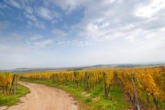 błękitny Germany drogowy nieba winnica zdjęcie royalty free