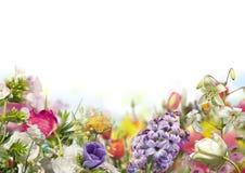 Błękitny hiacynt, biali tulipany i liliums z defocused barwionymi kwiatami w horyzontalnej wiośnie, uprawiamy ogródek z białym tł obrazy royalty free