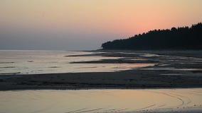 Błękitny i pomarańczowy niebo tuż przed wschód słońca odbijał na mokrym plażowym piasku z przybywającymi ocean fala zbiory wideo