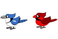 Błękitny Jay i Północna Główna kreskówka Zdjęcie Stock