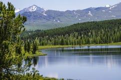 Błękitny jezioro, góra Altai Zdjęcia Stock