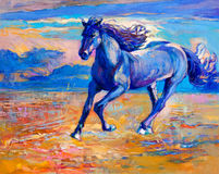 Błękitny koń Fotografia Royalty Free
