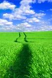 błękitny konceptualny pola zieleni wizerunku niebo Zdjęcie Stock