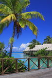 błękitny kontrasty zielony Polynesia Fotografia Royalty Free