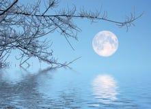 błękitny księżyc Fotografia Stock