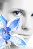 błękitny kwiat Obrazy Stock