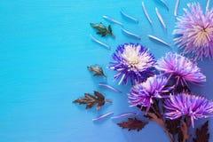 błękitny kwiatu przygotowania na drewnianym tle kosmos kopii Obraz Royalty Free