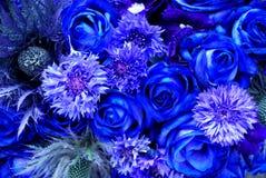 błękitny kwiaty Obrazy Stock