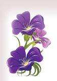 błękitny kwiaty ilustracja wektor