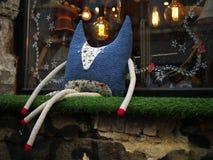 Błękitny lis z długimi nogami Obrazy Royalty Free