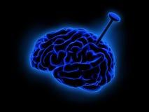 Błękitny mózg Zdjęcie Royalty Free